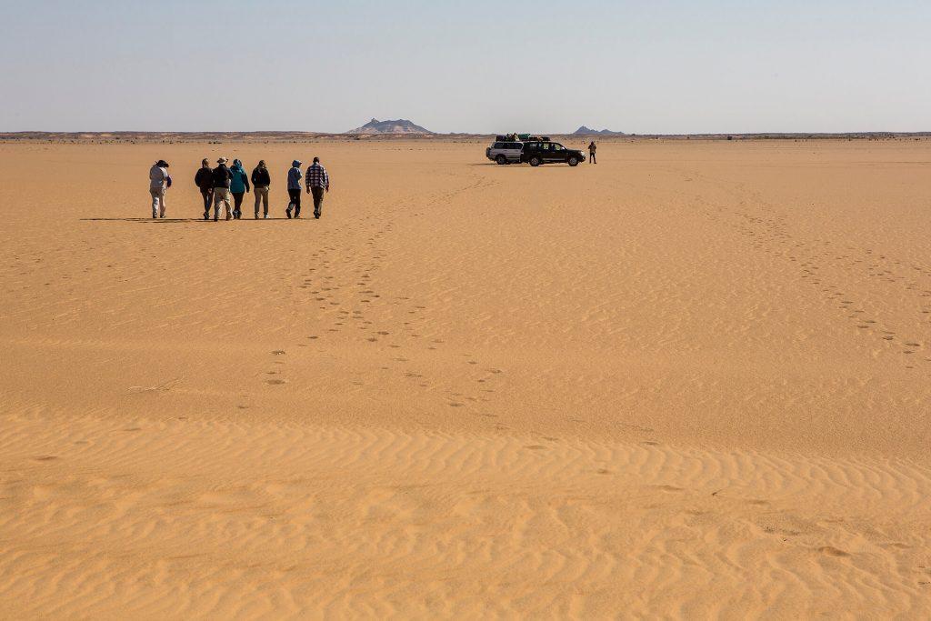 bayuda-desert-group