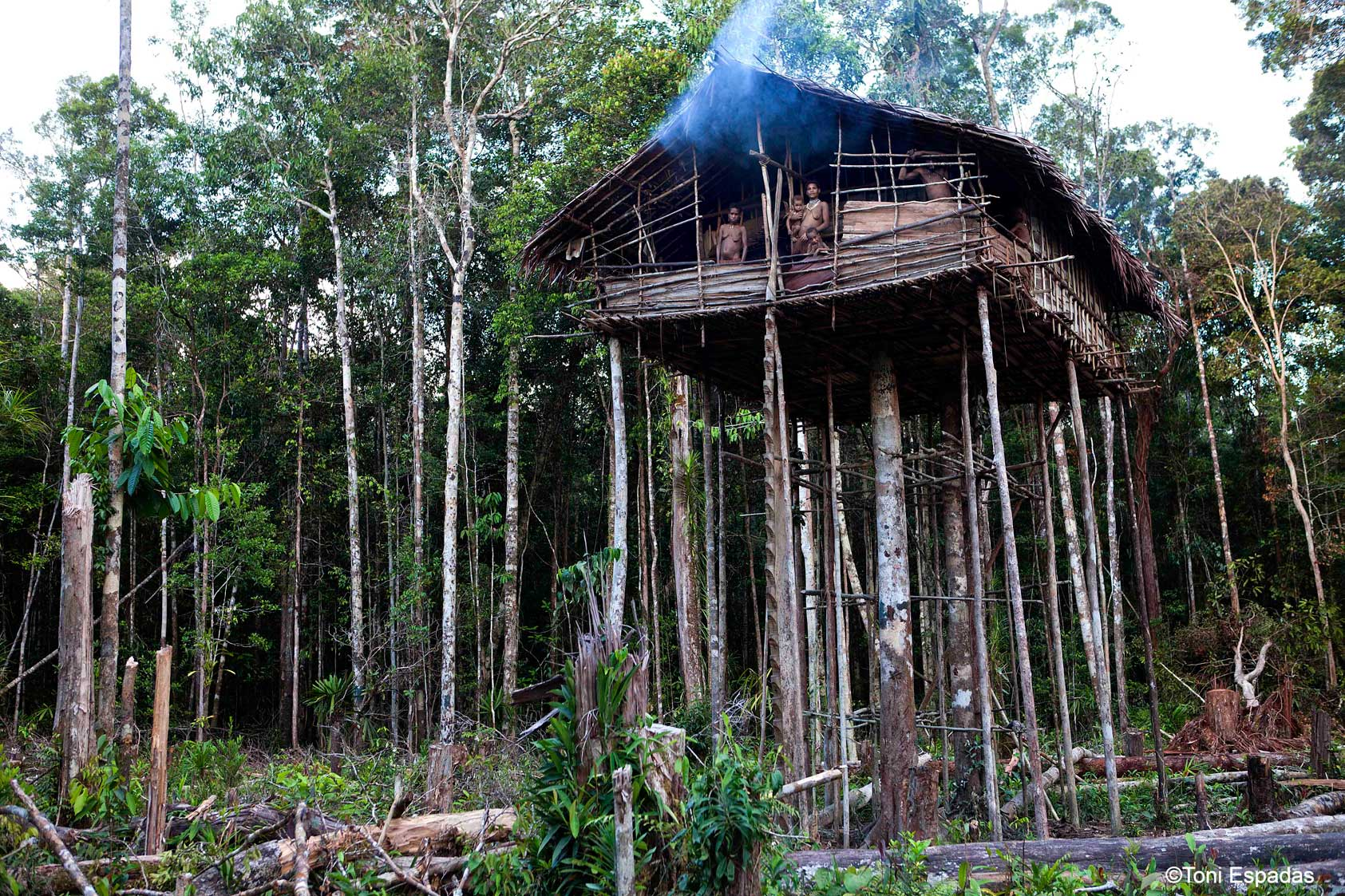 casa de los korowai