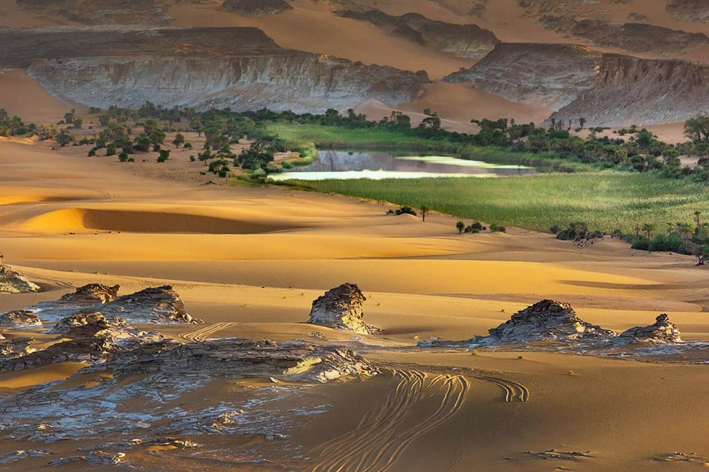 desierto-chad-oasis