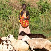 etnia didinga