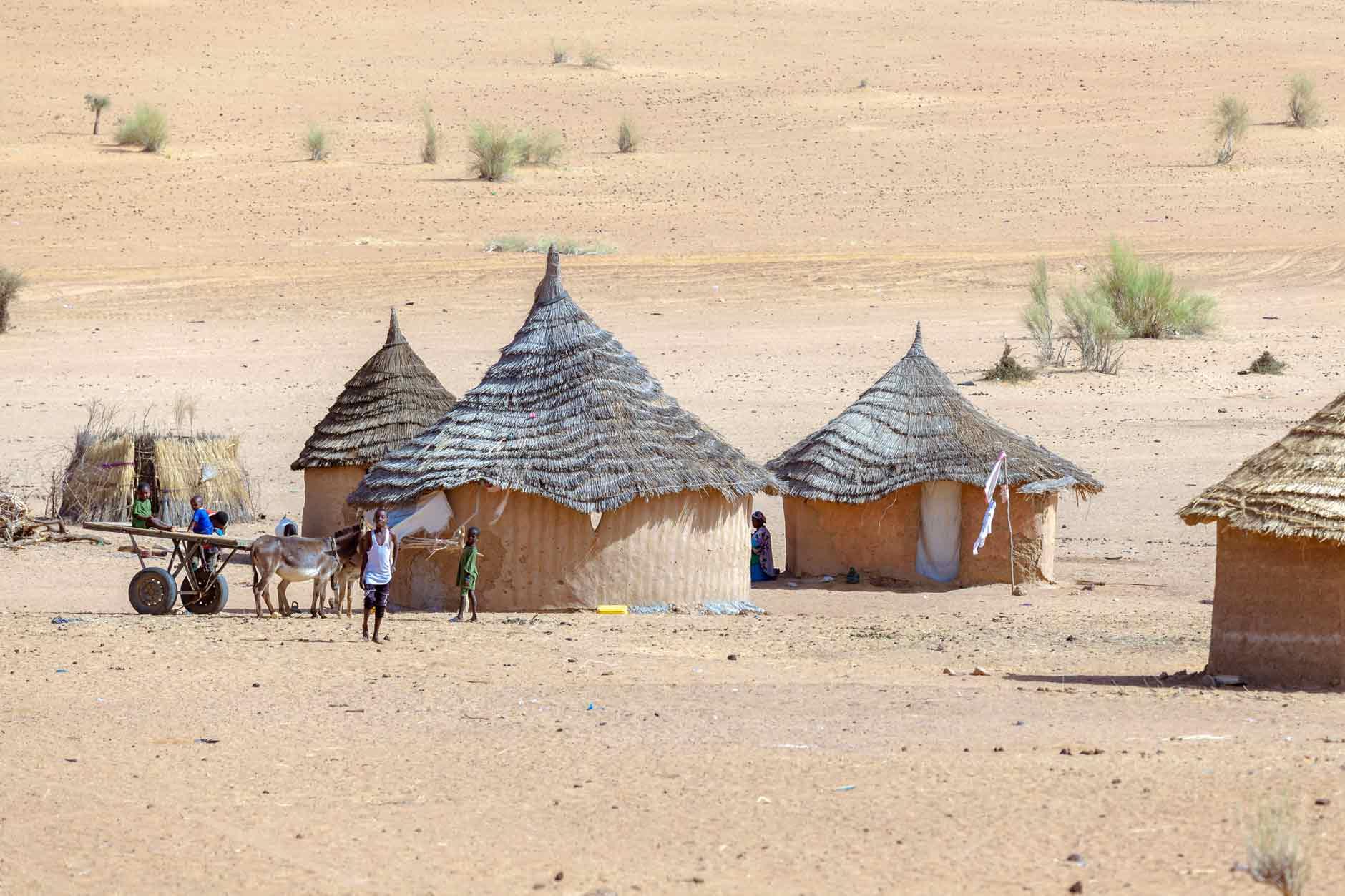 etnias de Senegal