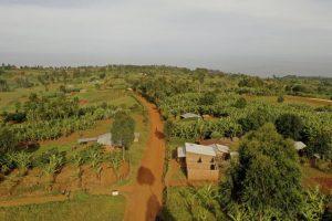 Kapchorwa Uganda