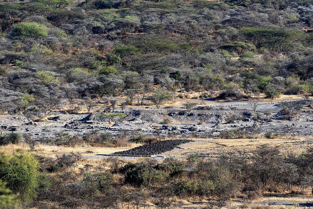 laetoli-footprints-ngorongoro-tanzania-safari