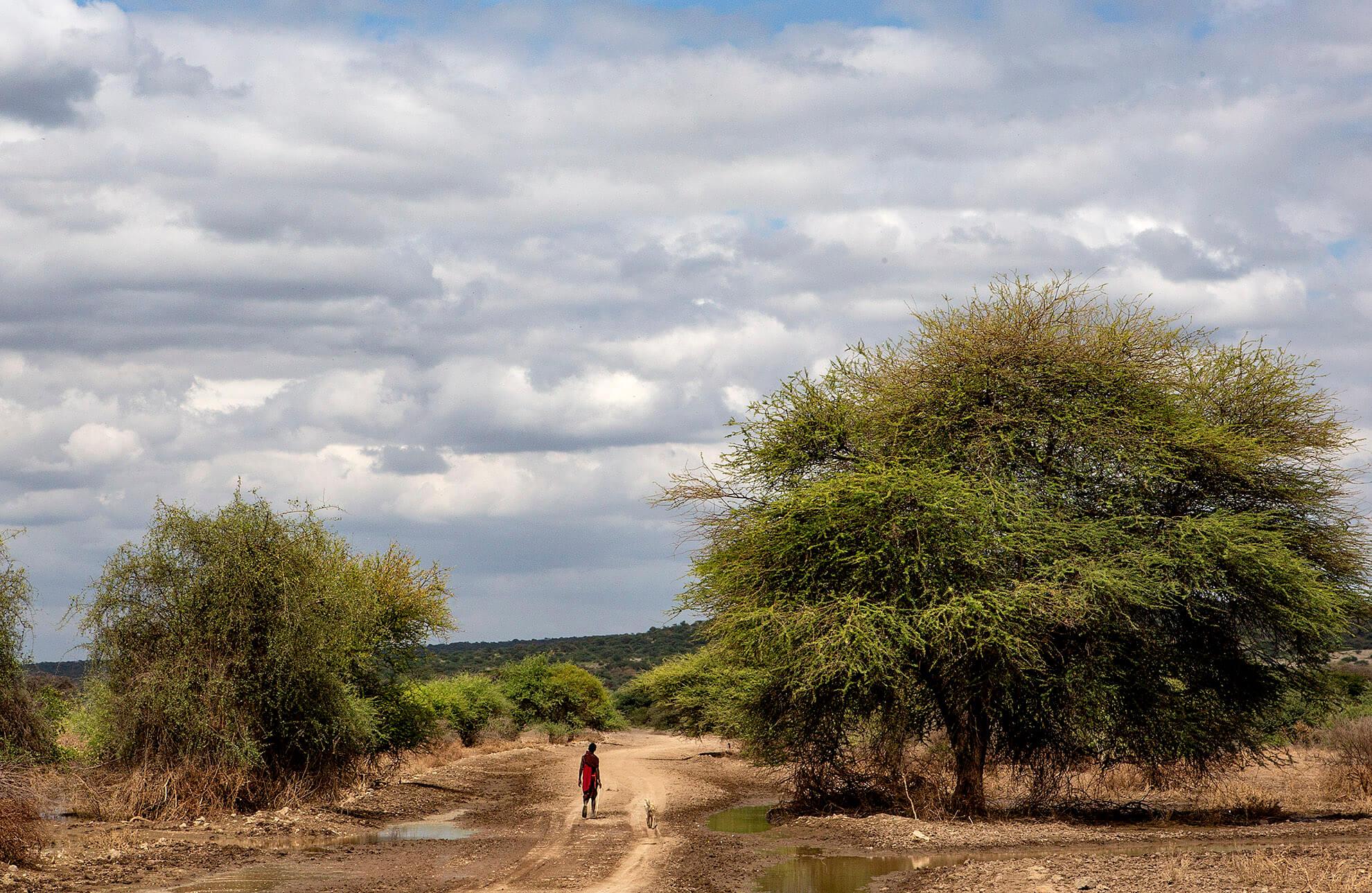 masai mara tanzania