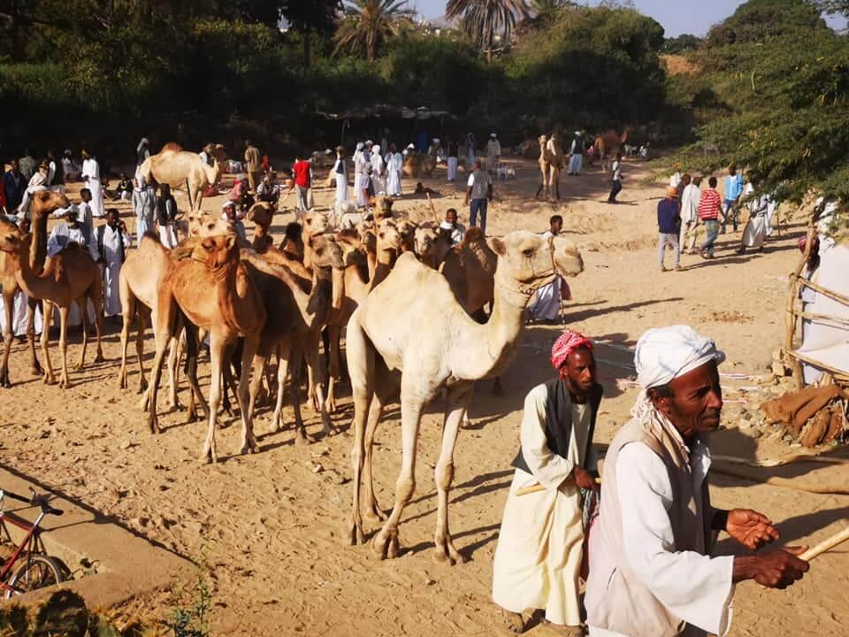 mercado karen Eritrea