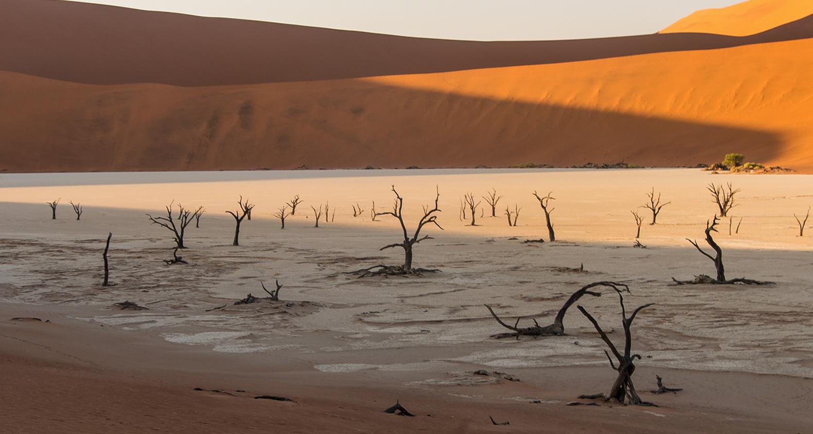 Namib desierto Namibia