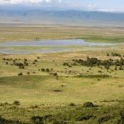 ngorongoro serengeti Tanzania