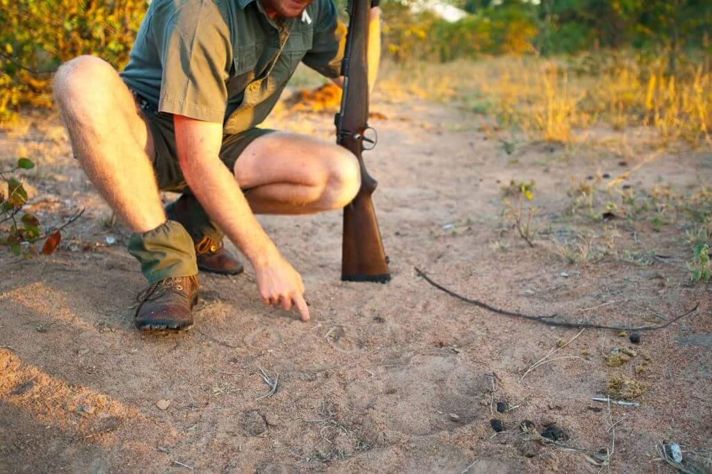 safaris a pie cuando