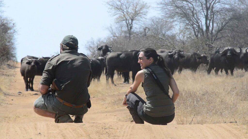 safaris a pie