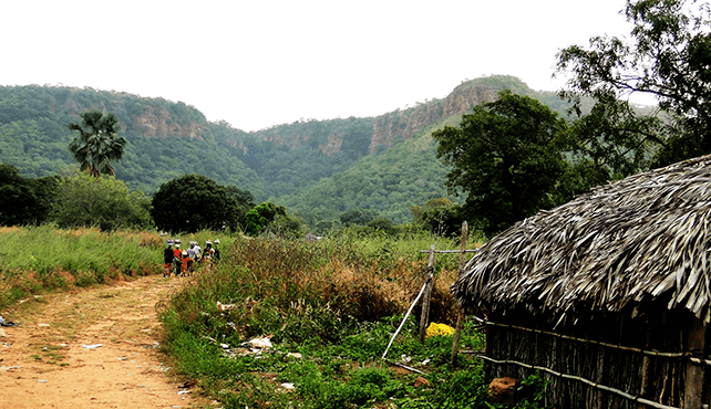 senegal -reserva natural dindefello