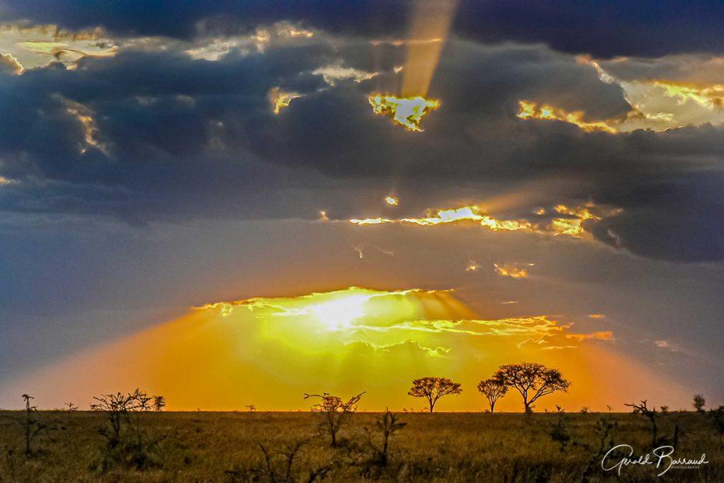 tanzania-la-gran-migracion-2