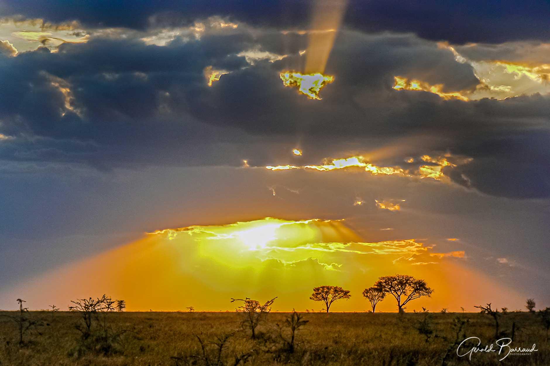 tanzania la gran migración