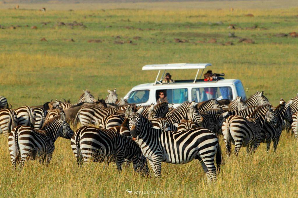 viaje-fografico-kenia-5