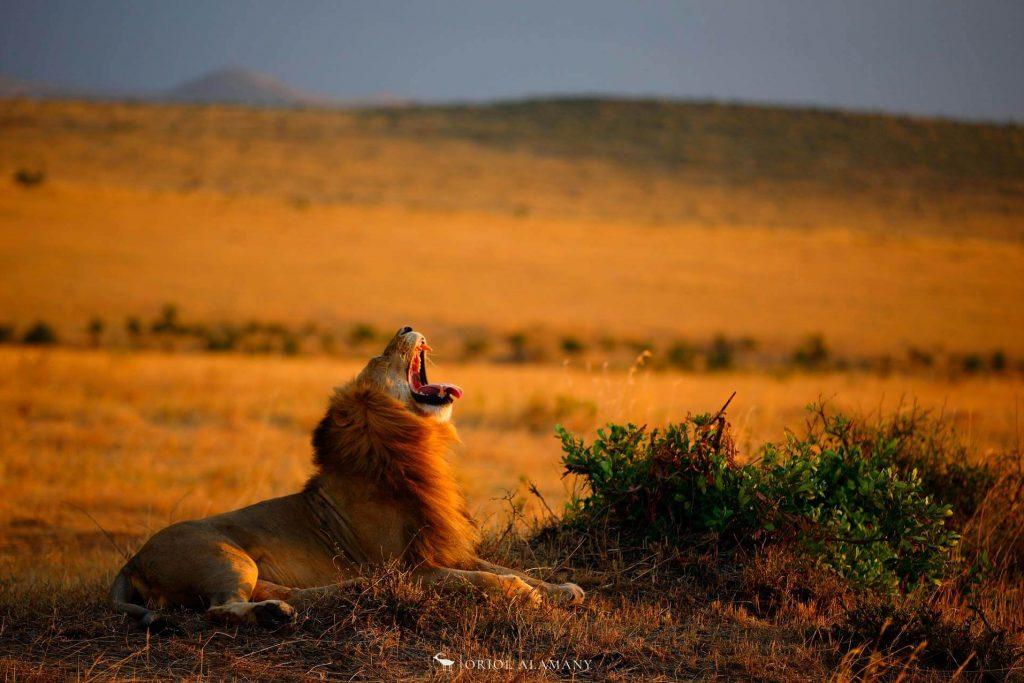 viaje-fografico-kenia-7